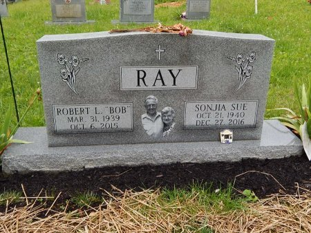 RAY, SONJIA SUE - Campbell County, Tennessee | SONJIA SUE RAY - Tennessee Gravestone Photos