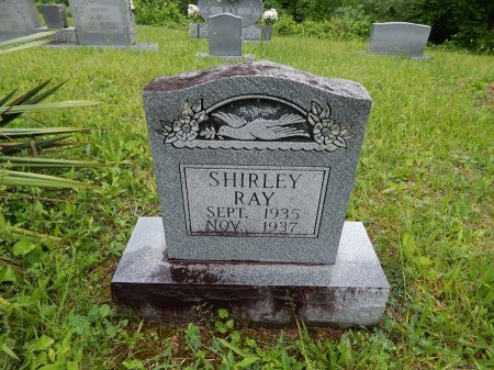 RAY, SHIRLEY - Campbell County, Tennessee | SHIRLEY RAY - Tennessee Gravestone Photos