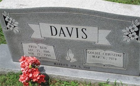 DAVIS, GOLDIE CHRISTINE - Cannon County, Tennessee | GOLDIE CHRISTINE DAVIS - Tennessee Gravestone Photos