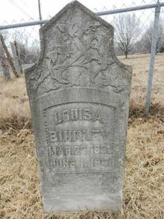 BINKLEY, LOUISA - Cheatham County, Tennessee | LOUISA BINKLEY - Tennessee Gravestone Photos