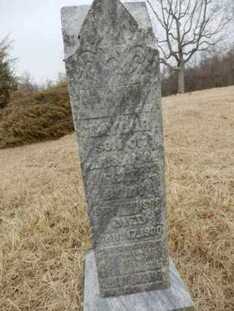 FELTS, TAYLOR - Cheatham County, Tennessee | TAYLOR FELTS - Tennessee Gravestone Photos