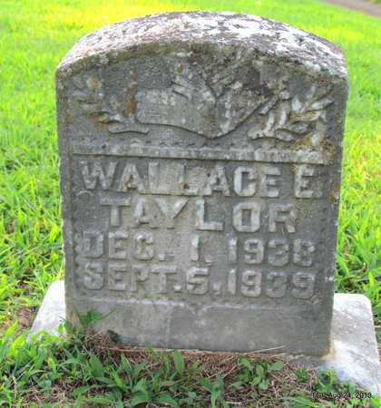 TAYLOR, WALLACE E - Cheatham County, Tennessee | WALLACE E TAYLOR - Tennessee Gravestone Photos