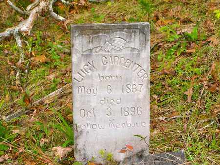 HARVEY CARPENTER, LUCY - Claiborne County, Tennessee | LUCY HARVEY CARPENTER - Tennessee Gravestone Photos