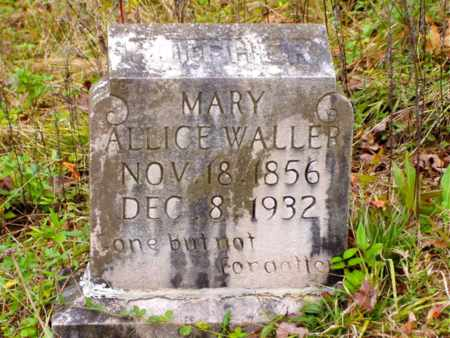 WALLER, MARY ALLICE - Claiborne County, Tennessee | MARY ALLICE WALLER - Tennessee Gravestone Photos