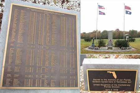 MILLS  (VETERAN CSA), JAMES F - Coffee County, Tennessee   JAMES F MILLS  (VETERAN CSA) - Tennessee Gravestone Photos