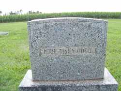 O'DELL, LOUE TISHA - Coffee County, Tennessee | LOUE TISHA O'DELL - Tennessee Gravestone Photos