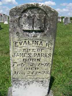 PARKS, EVALINA REBECCA - Coffee County, Tennessee | EVALINA REBECCA PARKS - Tennessee Gravestone Photos