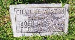 PINEGAR, CHARLIE WINTON - Coffee County, Tennessee | CHARLIE WINTON PINEGAR - Tennessee Gravestone Photos
