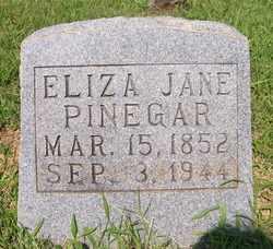 PINEGAR, ELIZA JANE - Coffee County, Tennessee | ELIZA JANE PINEGAR - Tennessee Gravestone Photos
