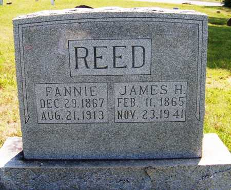REED, FANNIE - Coffee County, Tennessee | FANNIE REED - Tennessee Gravestone Photos