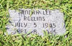 ROLLINS, SANDRA LEE - Coffee County, Tennessee   SANDRA LEE ROLLINS - Tennessee Gravestone Photos