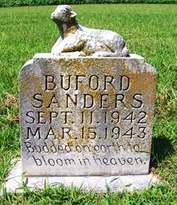 SANDERS, BUFORD - Coffee County, Tennessee | BUFORD SANDERS - Tennessee Gravestone Photos