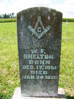 SHELTON, WILLIAM F. - Coffee County, Tennessee | WILLIAM F. SHELTON - Tennessee Gravestone Photos