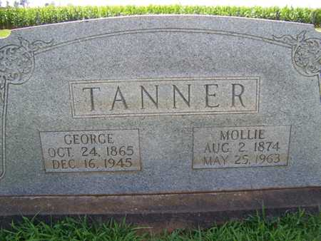 TANNER, GEORGE WASHINGTON - Coffee County, Tennessee | GEORGE WASHINGTON TANNER - Tennessee Gravestone Photos