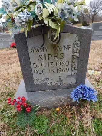 SIPES, JIMMY WAYNE - Crockett County, Tennessee | JIMMY WAYNE SIPES - Tennessee Gravestone Photos