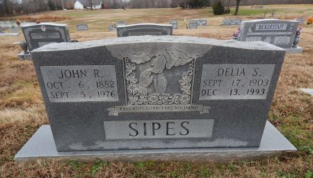 SIPES, DELIA S - Crockett County, Tennessee | DELIA S SIPES - Tennessee Gravestone Photos