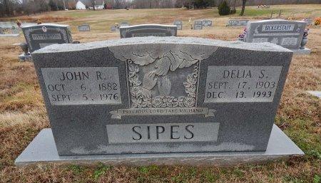 SIPES, JOHN R - Crockett County, Tennessee | JOHN R SIPES - Tennessee Gravestone Photos