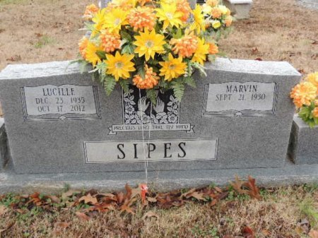 SIPES, LUCILLE - Crockett County, Tennessee | LUCILLE SIPES - Tennessee Gravestone Photos