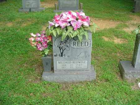 REED, MILDRED - Cumberland County, Tennessee   MILDRED REED - Tennessee Gravestone Photos