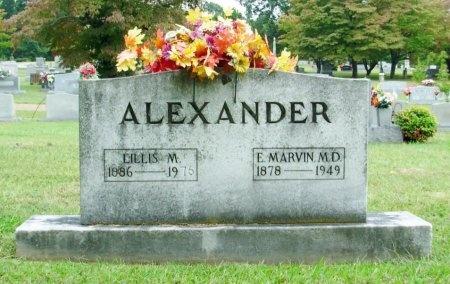ALEXANDER, LILLIS  - Davidson County, Tennessee   LILLIS  ALEXANDER - Tennessee Gravestone Photos