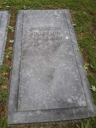 ANDERSON, MARY - Davidson County, Tennessee | MARY ANDERSON - Tennessee Gravestone Photos