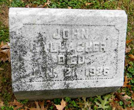 GALLAGHER, JOHN - Davidson County, Tennessee | JOHN GALLAGHER - Tennessee Gravestone Photos