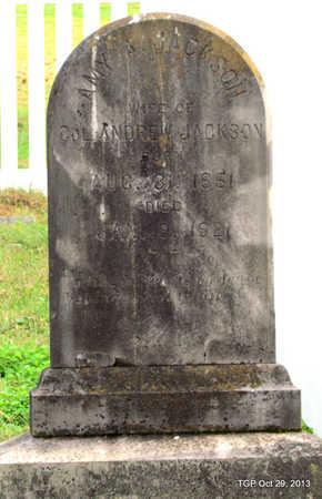 RICH JACKSON, AMY ANN - Davidson County, Tennessee | AMY ANN RICH JACKSON - Tennessee Gravestone Photos