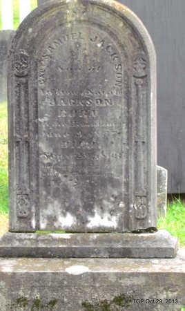 JACKSON (VETERAN CSA), SAMUEL - Davidson County, Tennessee | SAMUEL JACKSON (VETERAN CSA) - Tennessee Gravestone Photos