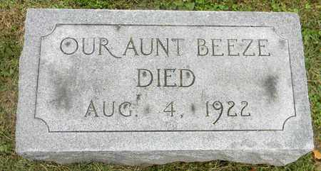 UNKNOWN, BEEZE - Davidson County, Tennessee | BEEZE UNKNOWN - Tennessee Gravestone Photos