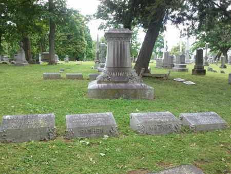 VAUGHN, FAMILY PLOT - Davidson County, Tennessee | FAMILY PLOT VAUGHN - Tennessee Gravestone Photos
