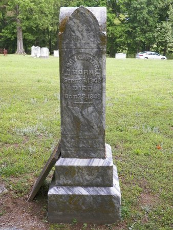 CANTRELL, LEROY - DeKalb County, Tennessee | LEROY CANTRELL - Tennessee Gravestone Photos