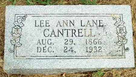 CANTRELL, LEE ANN - DeKalb County, Tennessee | LEE ANN CANTRELL - Tennessee Gravestone Photos
