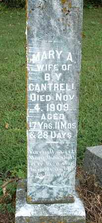 CANTRELL, MARY A. - DeKalb County, Tennessee | MARY A. CANTRELL - Tennessee Gravestone Photos