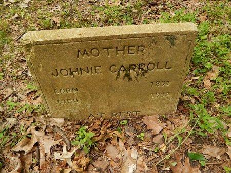 CARROLL, JOHNIE - Dyer County, Tennessee | JOHNIE CARROLL - Tennessee Gravestone Photos