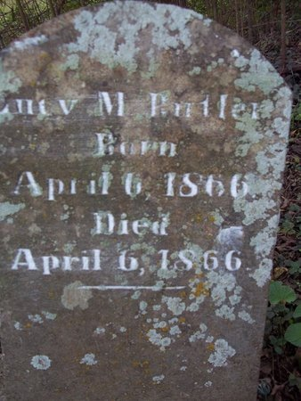 BUTLER, LUCY M. - Giles County, Tennessee | LUCY M. BUTLER - Tennessee Gravestone Photos
