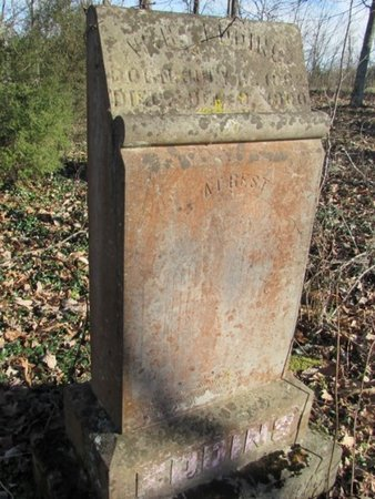 EDDINS, W. H. - Giles County, Tennessee | W. H. EDDINS - Tennessee Gravestone Photos