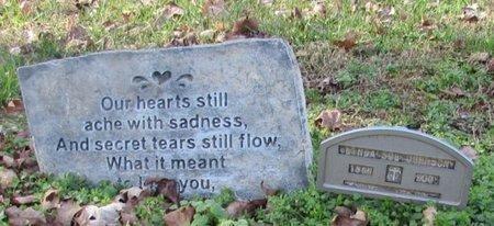 JOHNSON, WANDA SUE - Giles County, Tennessee | WANDA SUE JOHNSON - Tennessee Gravestone Photos