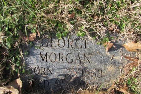 MORGAN, GEORGE - Giles County, Tennessee | GEORGE MORGAN - Tennessee Gravestone Photos