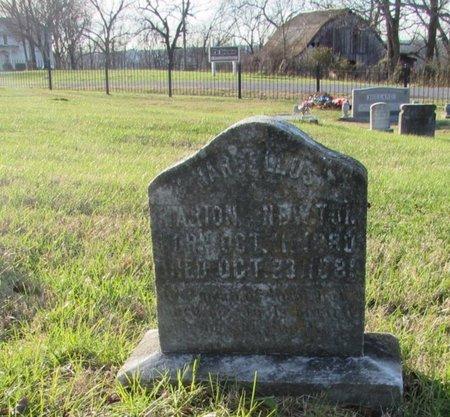 NEWTON, MARION - Giles County, Tennessee | MARION NEWTON - Tennessee Gravestone Photos