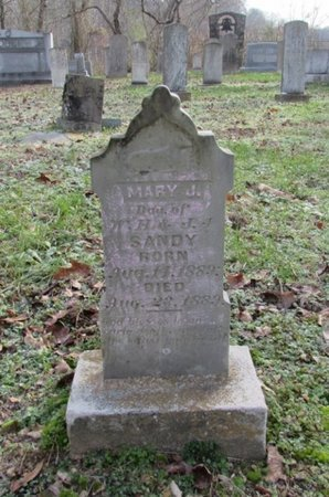 SANDY, MARY J. - Giles County, Tennessee | MARY J. SANDY - Tennessee Gravestone Photos