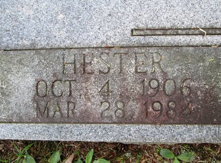 CHANCEY, HESTER - Hamilton County, Tennessee | HESTER CHANCEY - Tennessee Gravestone Photos