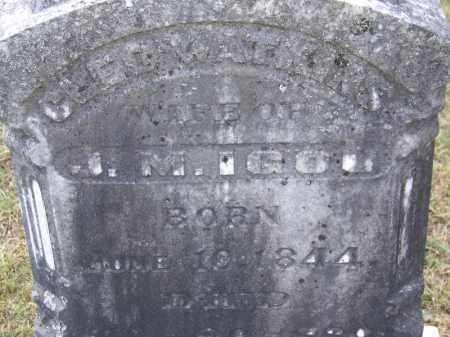 IGOU, CLEO - Hamilton County, Tennessee | CLEO IGOU - Tennessee Gravestone Photos