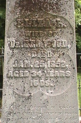 WOOD, ELIZA LOUISA (CLOSE UP) - Hardeman County, Tennessee | ELIZA LOUISA (CLOSE UP) WOOD - Tennessee Gravestone Photos