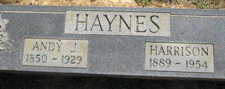 HAYNES, HARRISON - Hardin County, Tennessee | HARRISON HAYNES - Tennessee Gravestone Photos