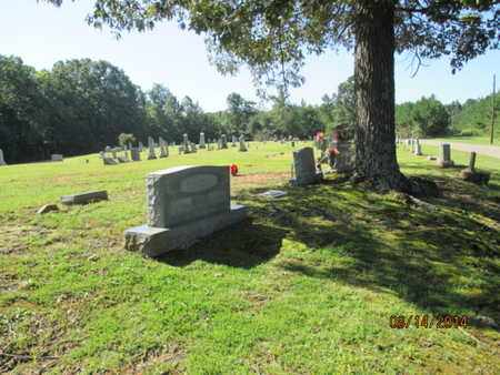 *OVERVIEW,  - Hardin County, Tennessee |  *OVERVIEW - Tennessee Gravestone Photos