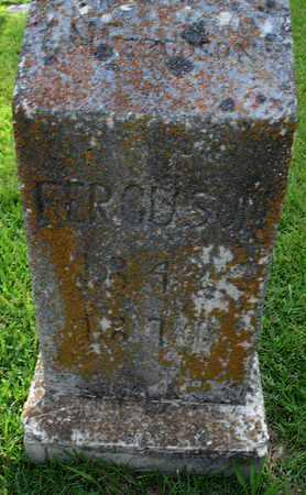 FERGUSON, X - Henderson County, Tennessee | X FERGUSON - Tennessee Gravestone Photos