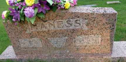 MANESS, JAMES E. - Henderson County, Tennessee | JAMES E. MANESS - Tennessee Gravestone Photos