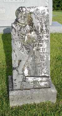 PARKER, F. P. - Henderson County, Tennessee | F. P. PARKER - Tennessee Gravestone Photos