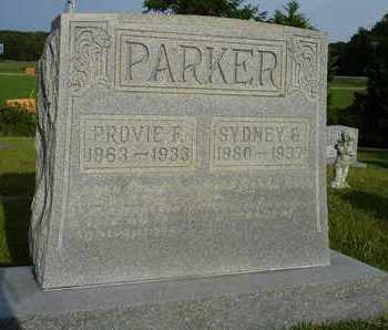 PARKER, PROVIE F. - Henderson County, Tennessee | PROVIE F. PARKER - Tennessee Gravestone Photos
