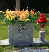 TAYLOR, CHARLES DANNY - Henderson County, Tennessee | CHARLES DANNY TAYLOR - Tennessee Gravestone Photos